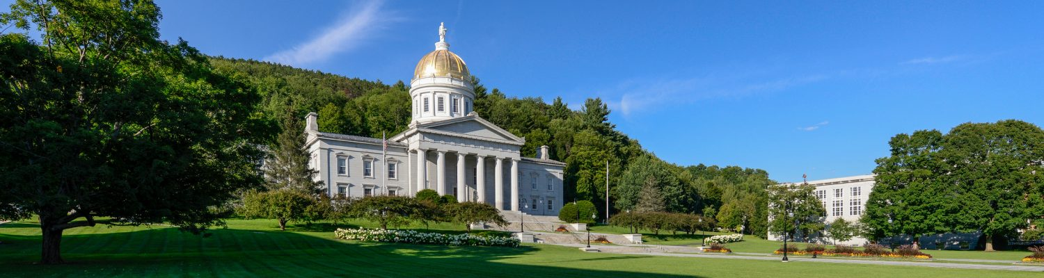 Vermont Communities in a Digital Age